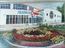 Бабушкин Н.Ф.1938 г.р. Ледовая арена,2016г. двп, масло 42х60