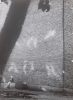 Мальгавко С.В.1959г.р. Стена,1989 г. фотобумага, фотопечать, 39,5х28,8