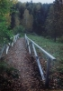 Мальгавко С.В.1959г.р. Осень,2005г. Вышний Волочёк фотобумага цветная фотопечать 40х29,3