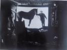 Мальгавко С.В.1959г.р. На подворье,1983 г. фотобумага, фотопечать 22х30
