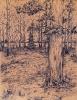 Строкин С.С. 1987 г.р. В лесу, 2008 г. бум. гелиевая ручка