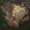 Дорохов Е.Д. Букет. Скромный подарок,1997 г холст, масло
