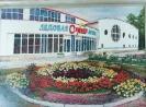 Бабушкин Н.Ф.1938 г.р. Ледовая арена,2016 г. двп, масло